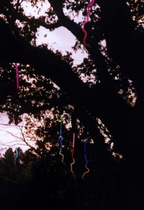 """Hanging Stalaglites"" neon sculpture art installation in Celebration in the Oaks New Orleans by Eric Ehlenberger"