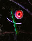 Neon Sculpture, Neon Art Installation, Celebration in the Oaks, New Orleans 1998